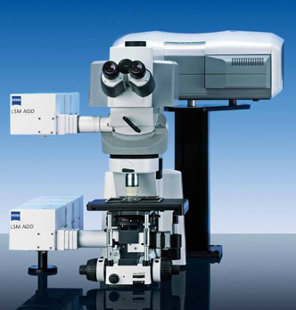 Zeiss LSM 710 confocal fluorescence microscope