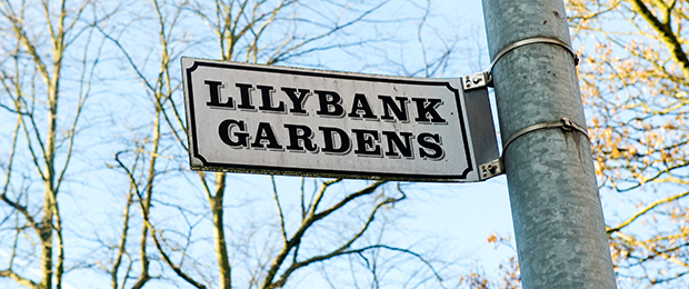 street sign at Lilybank Gardens