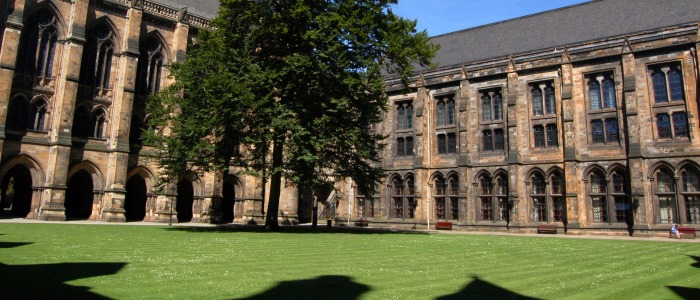 View of the tree and Bute Hall in the east quadrangle
