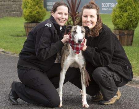 Scottish SPCA's education and research manager Gilly Mendes Ferreira and University of Glasgow PhD student Amy Bowman with Maurice the Lurcher.