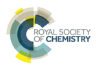 Logo of the Royal Society of Chemistry
