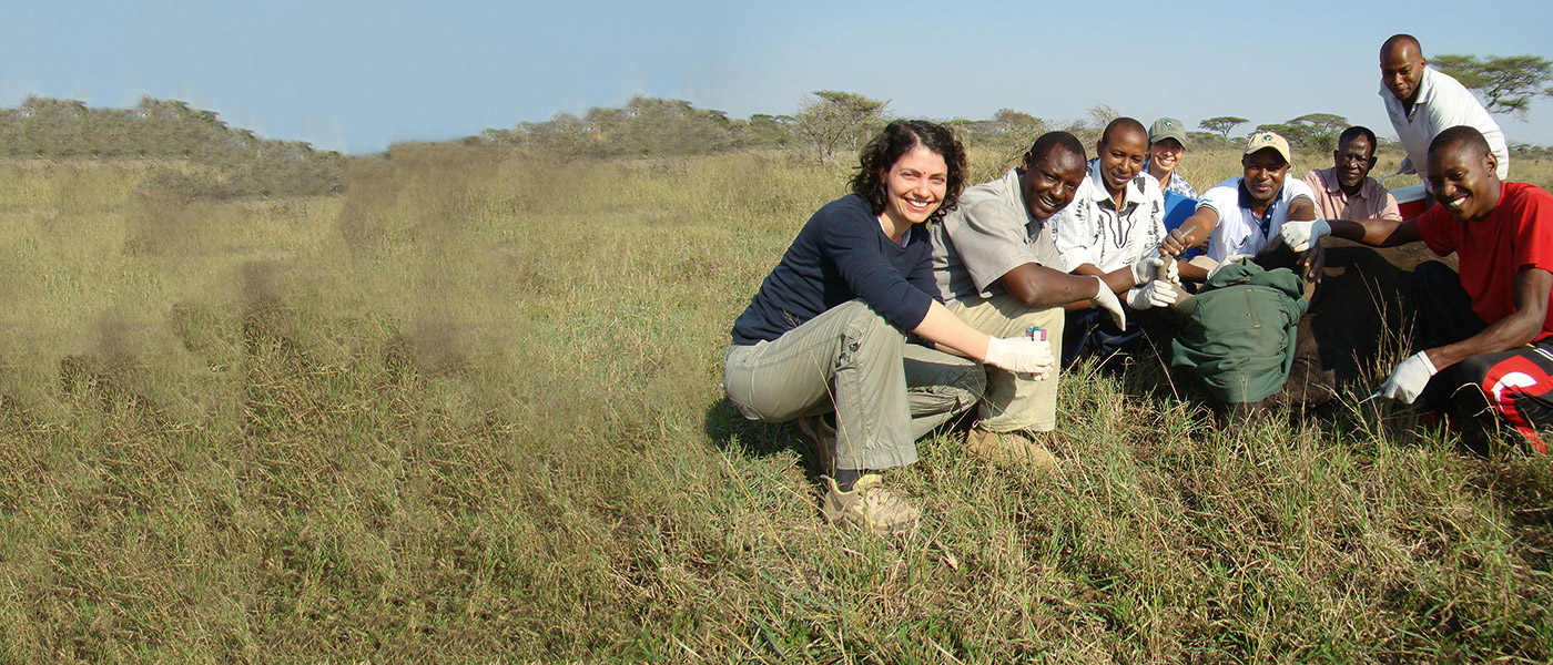 Dr Tiziana Lembo at work in the field