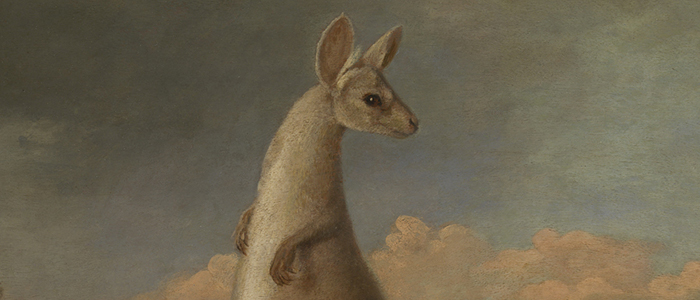Painting of a Kangaroo