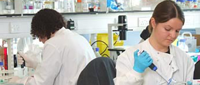 image of 2 researchers in lab
