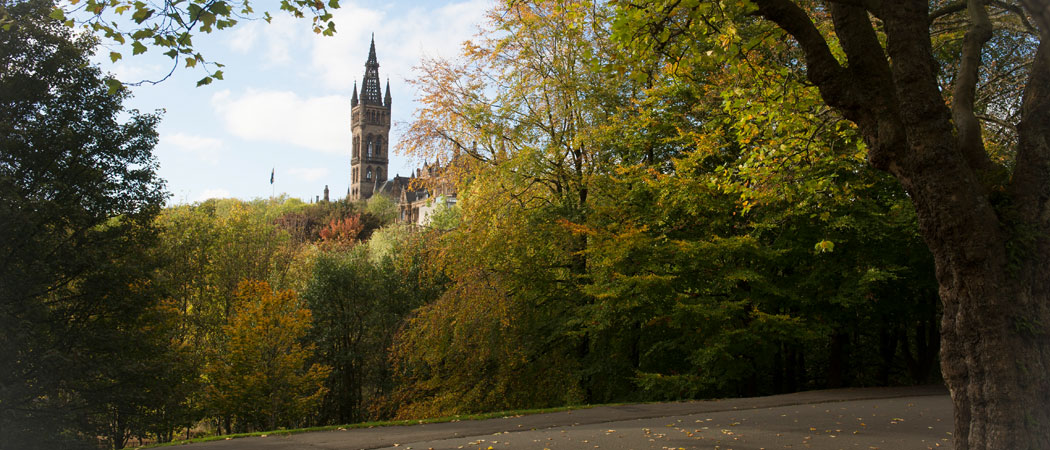 The University campus from a distance