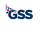 Logo of the spin-out company GSS now part of Synopsys