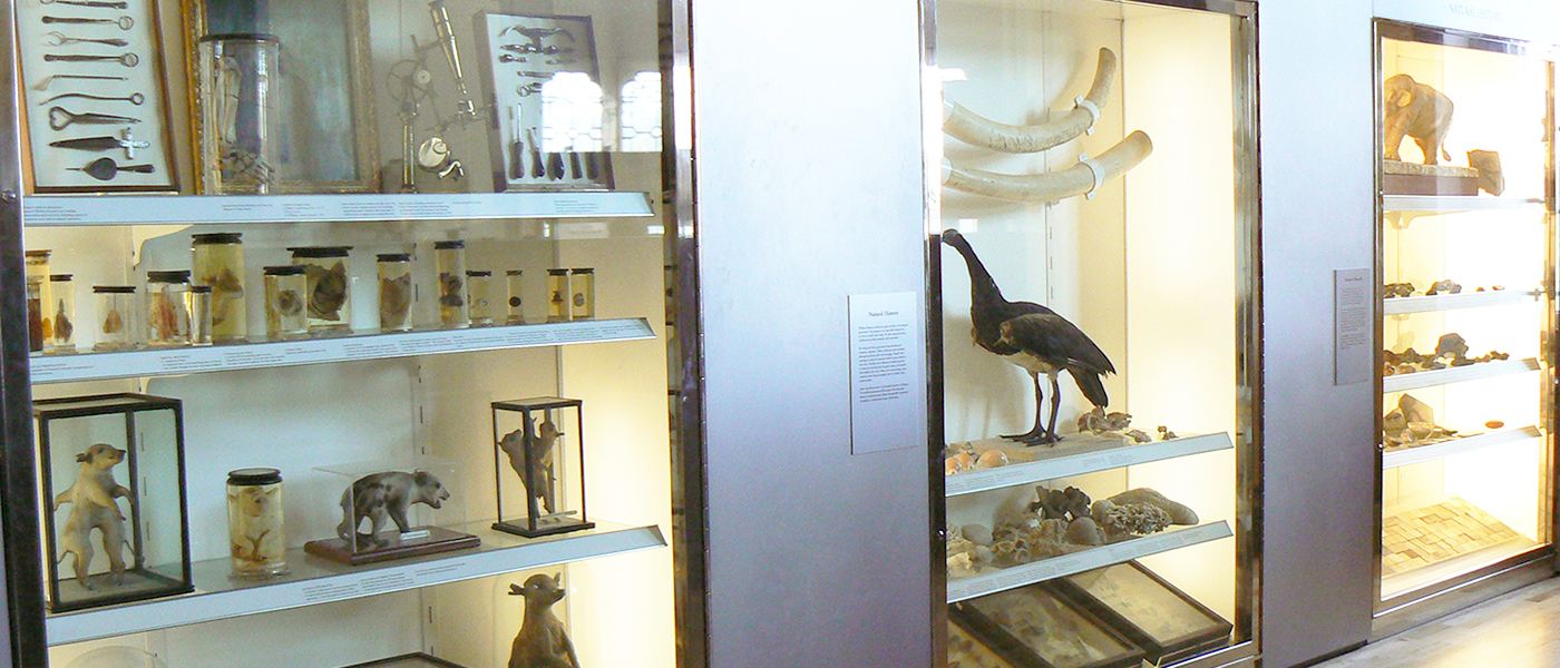 Hunter displays in the Hunterian Museum