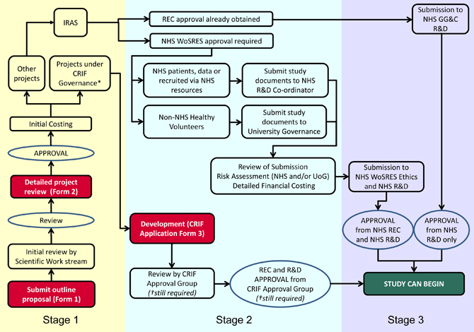 Flowchart of proposed permissions/processes for studies involving the 7T ICE scanner