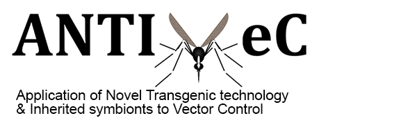 Anti-VeC: Application of Novel Transgenic technology & Inherited symbionts to Vector Control.