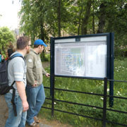 Male students reading a campus map