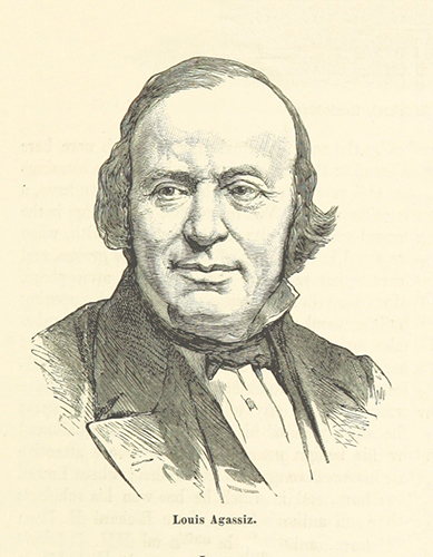 Biologist and geologist Louis Agassiz. Image courtesy of the British Library
