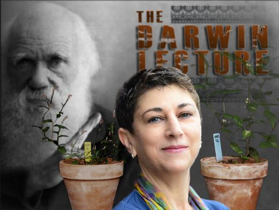Collage of Sonia Sultan with Darwin and Plants