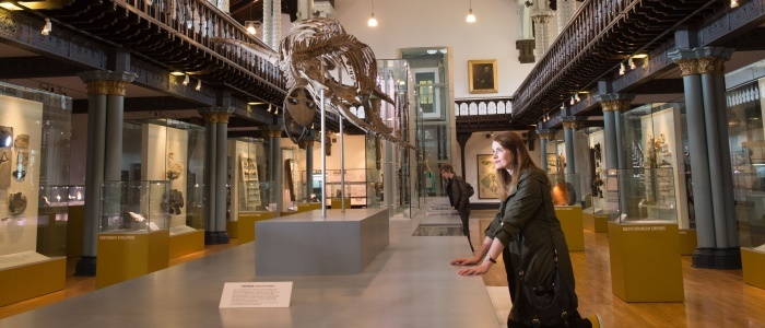 The interior of the Hunterian Museum
