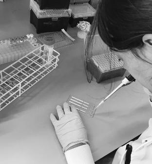 Research on bench with pipette