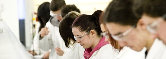 Biomedical Science MRes, Postgraduate Taught Programme, MVLS GRaduate School, University of Glasgow, Glasgow University