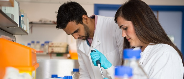 A male and a female researcher working in the British Heart Foundation lab