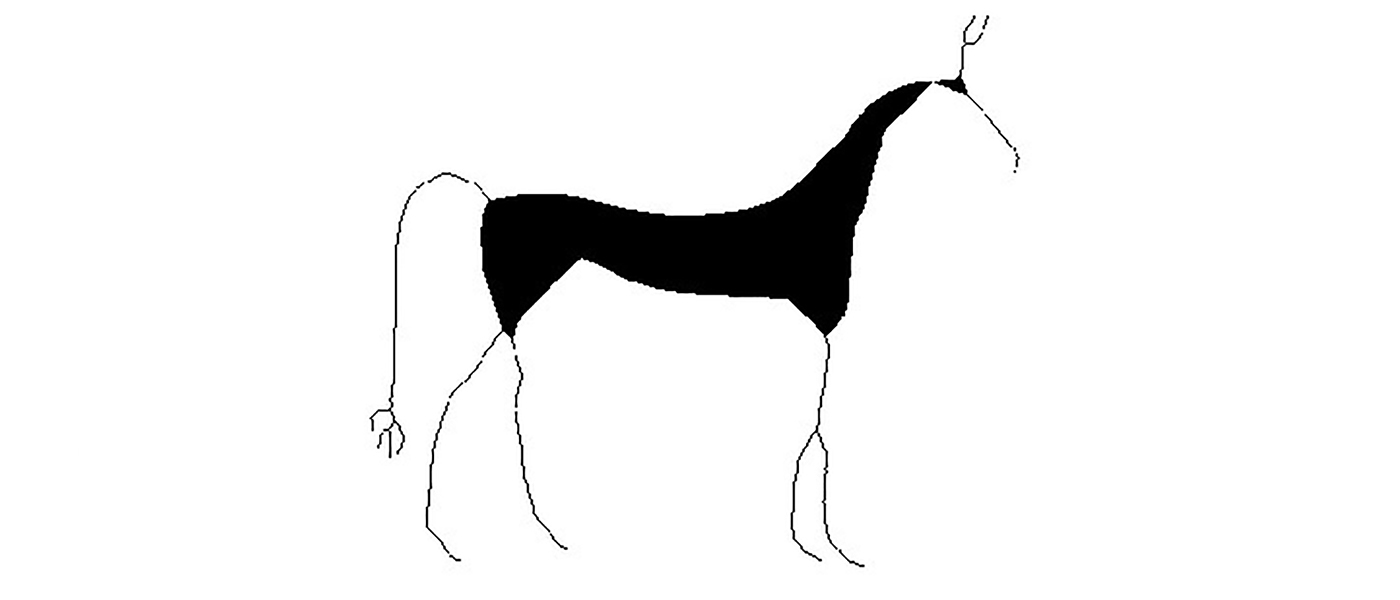 Alex Impey horse drawing