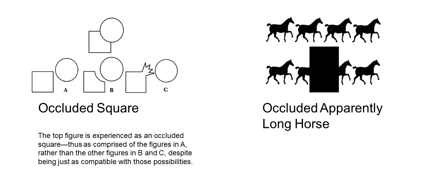 First image: flat round figure partially obscuring corner of flat square figure, with 3 possibilities of what the round figure hides: complete square; incomplete square missing corner; or square with an extension. Second image: 4 horse silhouettes on top line, repeated on bottom line with dark box hiding the front of a horse and the back of the next so it looks like 1 'long horse' between 2 horses