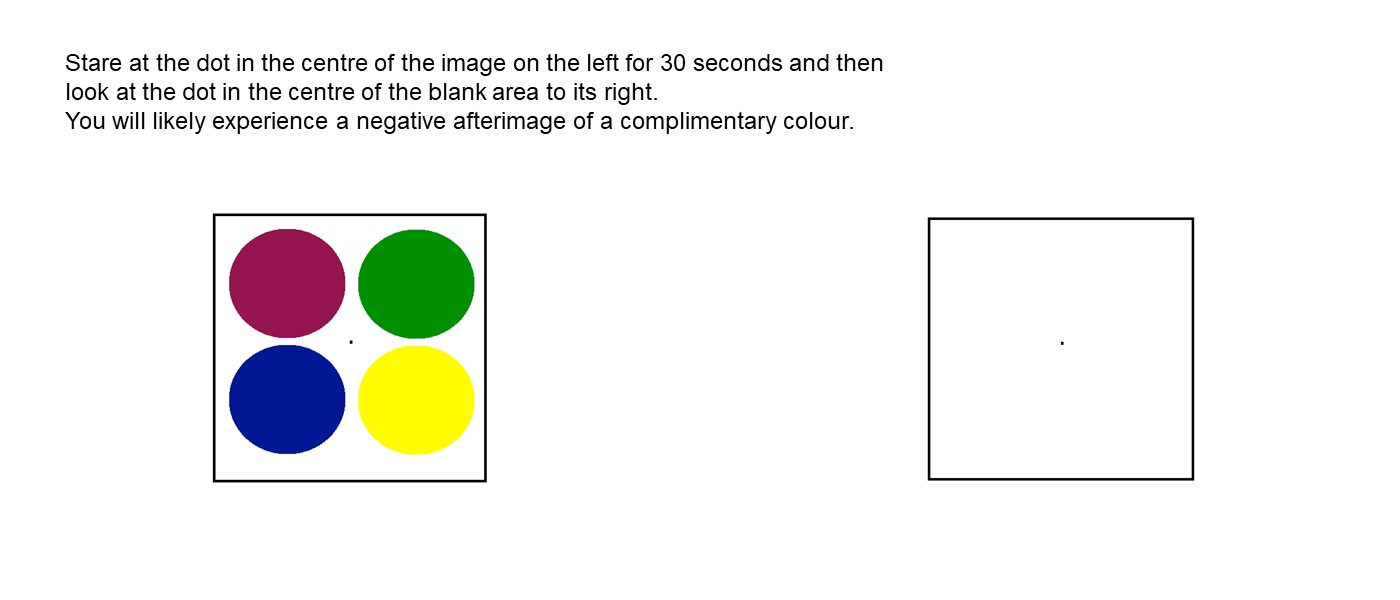 A black-lined square containing four coloured circles and a dot in the middle, and a second empty box of similar size. The text reads: Stare at the dot in the centre of the image on the left for 30 seconds and then look at the dot in the centre of the blank area to its right. You will likely experience a negative afterimage of a complimentary colour