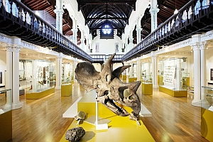 Hunterian interior © The Hunterian Museum and Art Gallery, University of Glasgow.