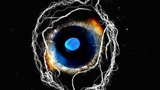 an artwork with a phantastic blue human eye surrounded by neuron tendrils, which also resembles a galaxy