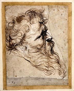 Peter Paul Rubens, Head of a Bearded Man in Profile to the Right, Pen and brown ink, heightened with white.