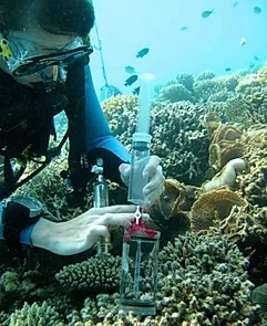 Underwater scientist saving samples