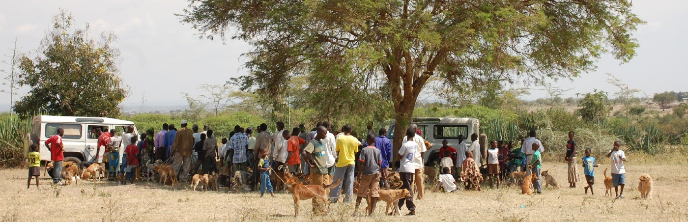 Dog owners queuing for dog vaccinations, Tanzania