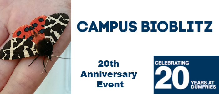 Image for Celebrating 20 Years in Dumfries - Campus Bioblitz